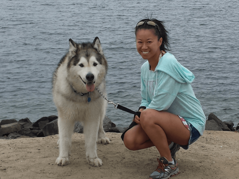 Christina Kwan and Brooklyn the Alaskan Malamute