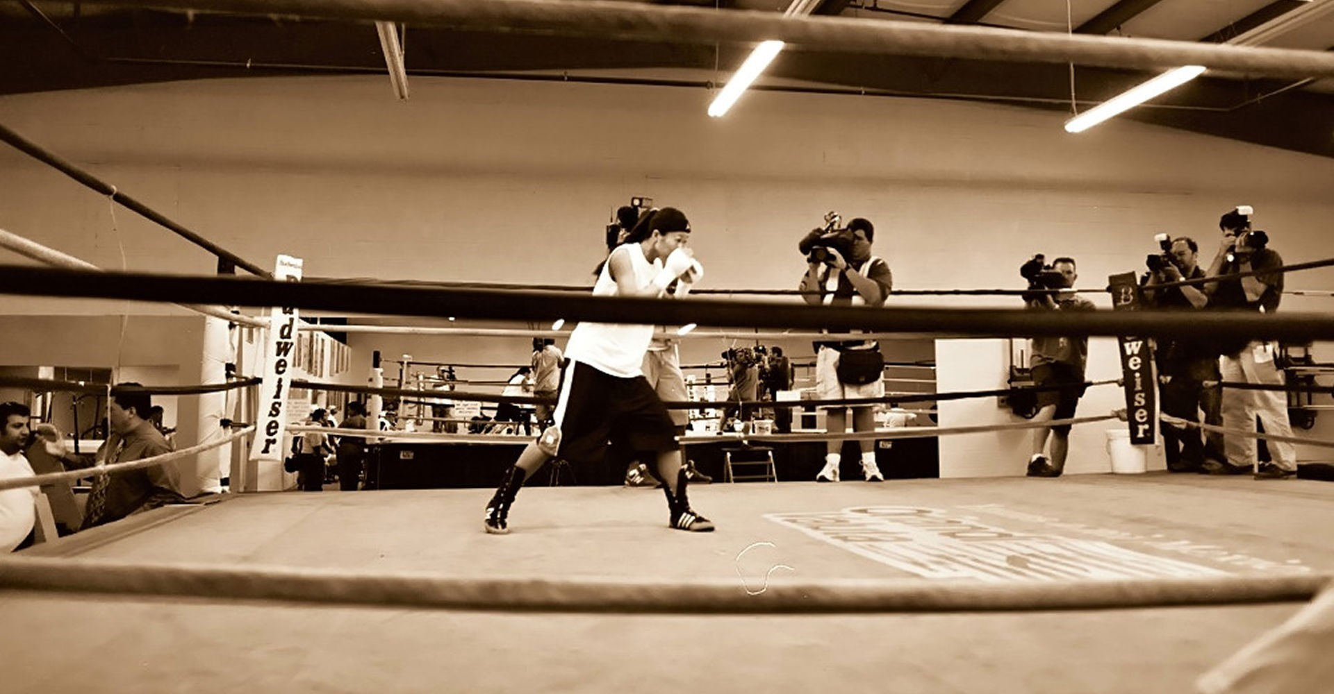 Sepia-Boxing-Image